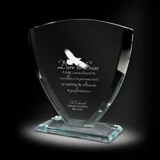 Glass Trophies - Safeguard Glass Award