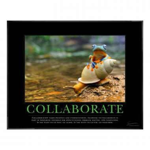 Collaboration Rainforest Motivational Poster