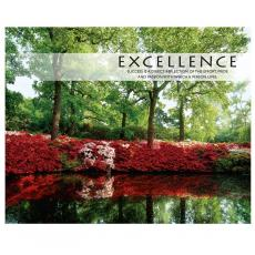 Motivational Posters - Excellence Azalea Unframed Motivational Poster