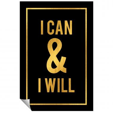 I Can and I Will - Gold Series I