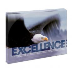 Modern Motivational Prints - Excellence Eagle Infinity Edge Acrylic Desktop