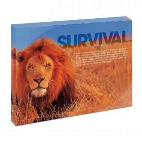 Survival Lion Infinity Edge Acrylic Desktop