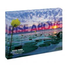 Modern Motivational Prints - Rise Above Lily Pads Infinity Edge Acrylic Desktop