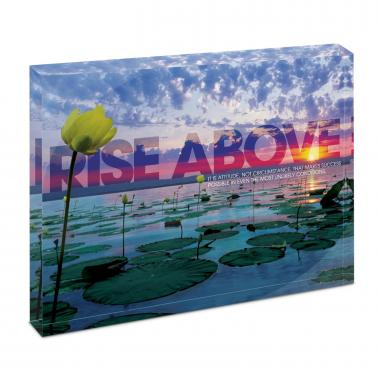 Rise Above Lily Pads Infinity Edge Acrylic Desktop