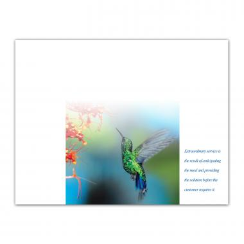 Service Hummingbird Certificate Paper
