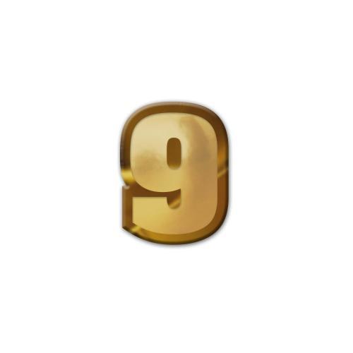 9 Pennant Number Lapel Pin