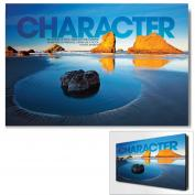 Character Boulder Infinity Edge Wall Decor