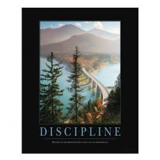 All Motivational Posters - Discipline Bridge Motivational Poster