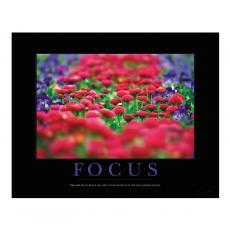 Focus Flowers Motivational Poster