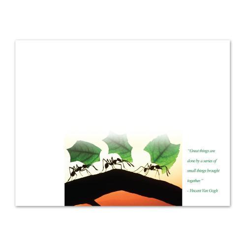 Teamwork Ants Certificate Paper