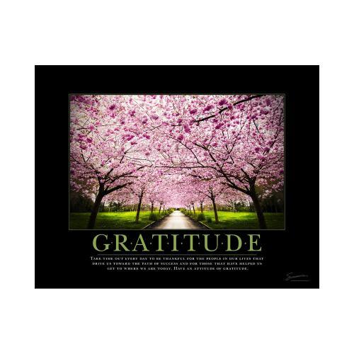 Gratitude Cherry Blossoms Mini Poster