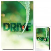 Drive LadyBug Infinity Edge Wall Decor