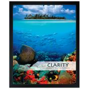 Clarity Reef Unmatted Framed Motivational Poster