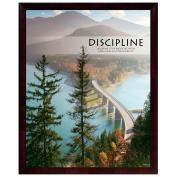 Discipline Bridge Unmatted Framed Motivational Poster