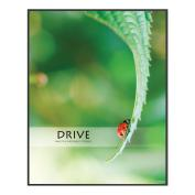 Drive LadyBug Unmatted Framed Motivational Poster