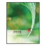 Drive LadyBug Unmatted Framed Motivational Poster