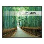 Passion Bamboo Path Unmatted Framed Motivational Poster