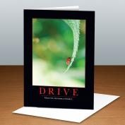 Drive LadyBug 25-Pack Greeting Cards