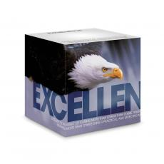 Co-Worker Gifts - Excellence Eagle Self-Stick Note Cube