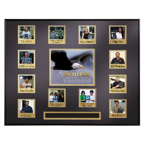 Excellence Eagle Perpetual Award Plaque