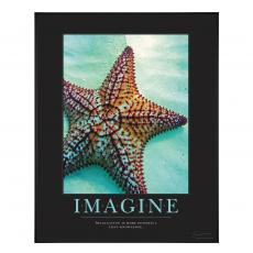 Imagine Starfish Motivational Poster