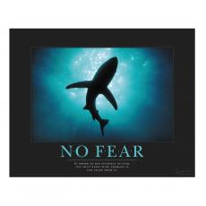 Classic Motivational Posters - No Fear Shark Motivational Poster