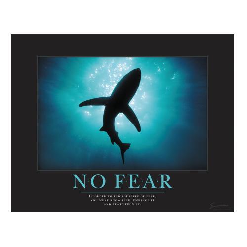 No Fear Shark Motivational Poster