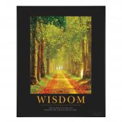 Wisdom Path Motivational Poster Classic (732322), Motivational Posters
