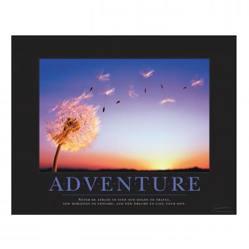 Adventure Dandelion Motivational Poster