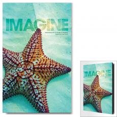Imagine Starfish Infinity Edge Wall Decor