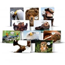 Variety Card Packs - Funny Animal Card Sampler-50 Pack