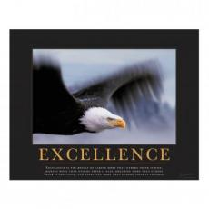 All Motivational Posters - Excellence Eagle Motivational Poster