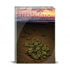 Modern Motivation - Determination Turtles Desktop Print
