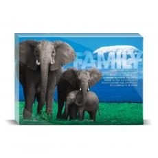 Modern Motivation - Family Elephants Desktop Print