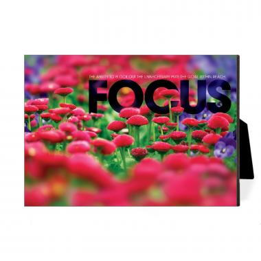 Focus Flowers Desktop Print
