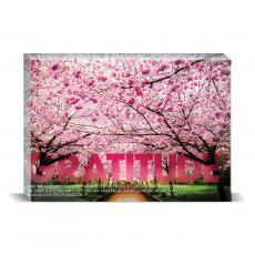 Modern Motivation - Gratitude Cherry Blossoms Desktop Print