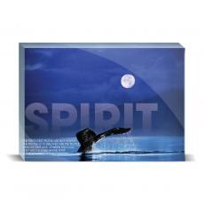 Modern Motivation - Spirit Whale Desktop Print