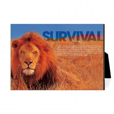 Survival Lion Desktop Print