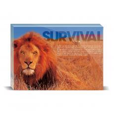 Modern Motivation - Survival Lion Desktop Print