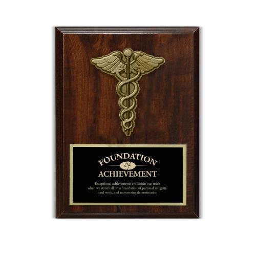 Caduceus 3D Presentation Award Plaque