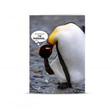 Business Occasion Cards - I'm Thinking Penguin 25-Pack Greeting Cards