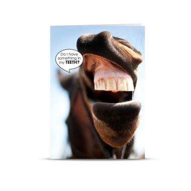 Horse Teeth 25-Pack Greeting Cards