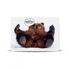 Office Humor Cards - Down Hill Bear 25-Pack Greeting Cards