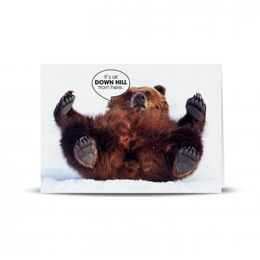 Down Hill Bear 25-Pack Greeting Cards