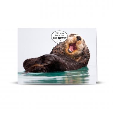 Big News Otter 25-Pack Greeting Cards