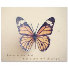 All Motivational Posters - Butterfly Beauty Inspirational Art